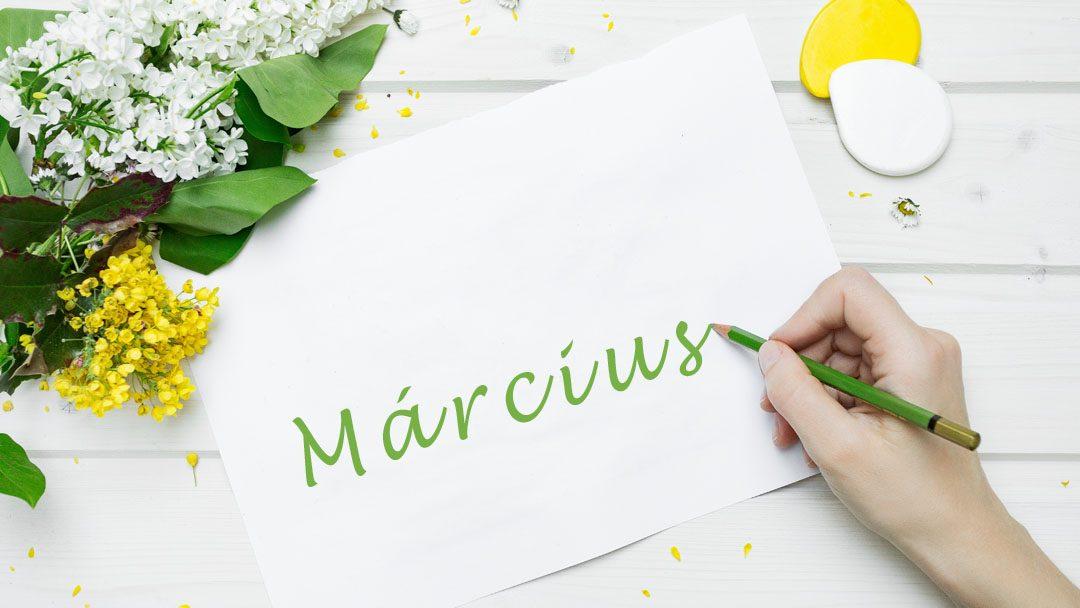 Te mire koncentrálsz márciusban? Bizonytalanoknak íme 17 zöld marketing cél